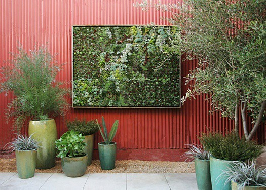 featured posts image for Living garden walls: succulent eco art