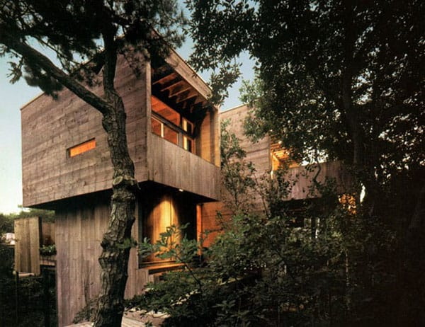 featured posts image for Rustic Fire Island treehouse