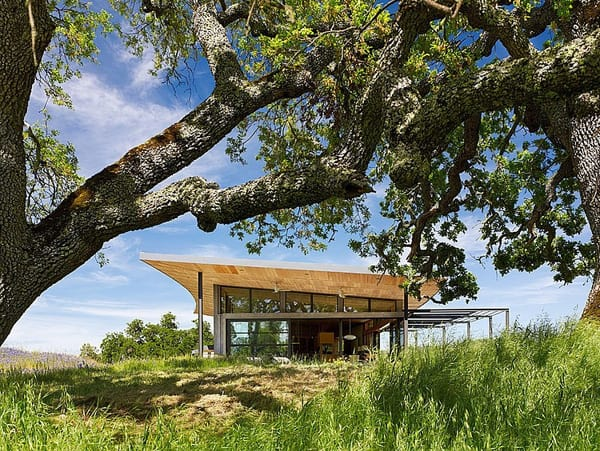 Caterpillar House-Feldman Architecture-07-1 Kind Design