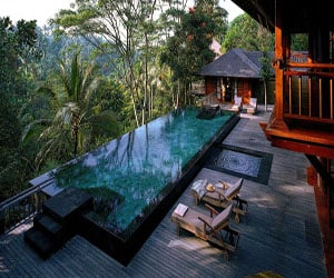featured posts image for Tropical wellness retreat overlooking the Bali jungle