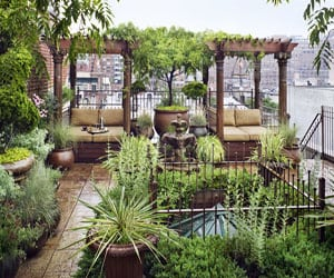 featured posts image for New York City penthouse with a garden paradise