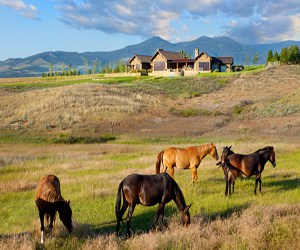 featured posts image for Picturesque rural farmhouse in Montana
