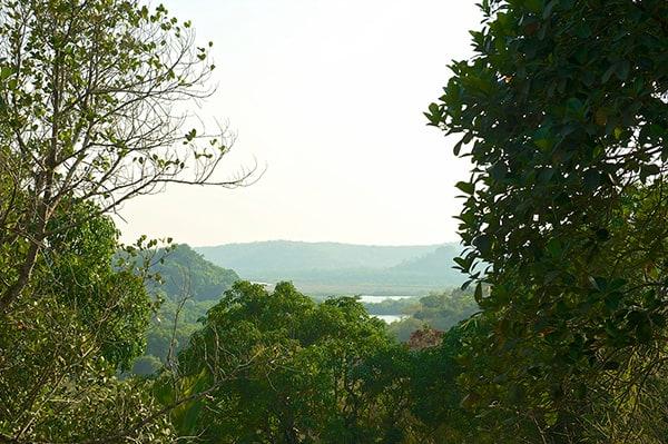 North Goa Residence-18-1 Kindesign