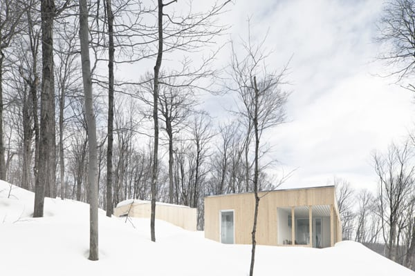 featured posts image for Modern shelter camouflaged in the forested Blue Hills