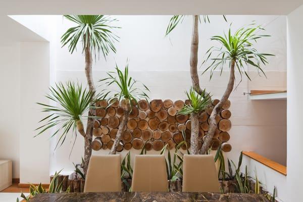 Nhabeo House-Trinhvieta Architects-15-1 Kindesign