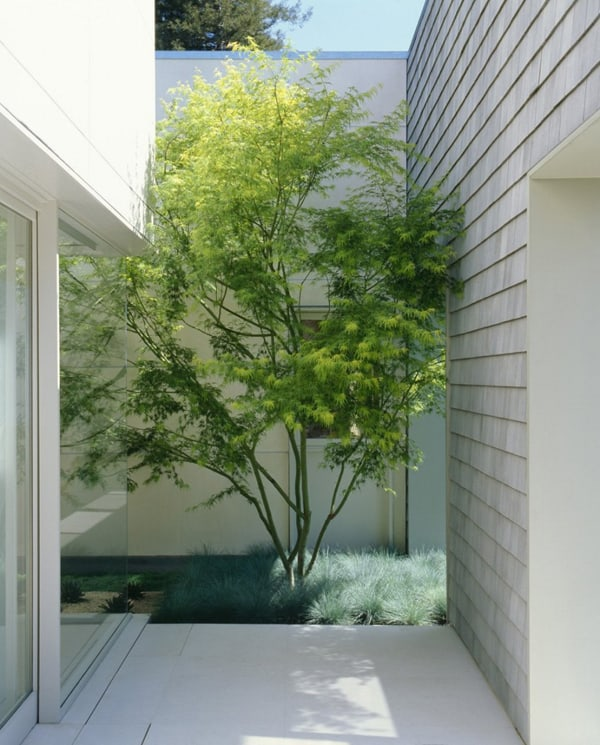 Marin County Residence-Dirk Denison Architects-05-1 Kindesign