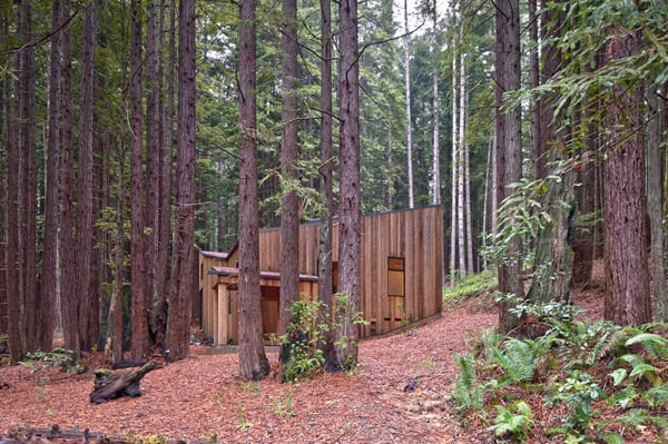 Sea Ranch Cabin-Frank Architects-07-1 Kindesign