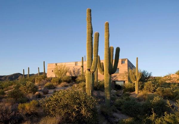 Desert Courtyard House-Wendell Burnette Architects-20-1 Kindesign