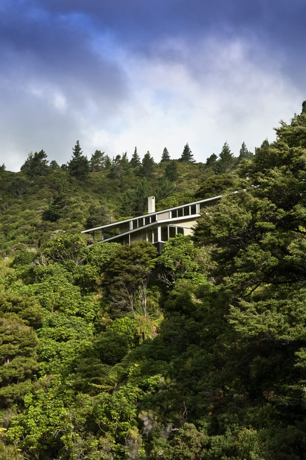Apple Bay House Floats Amongst The Trees In New Zealand - Fashionable-one-storey-house-by-parsonson-architects