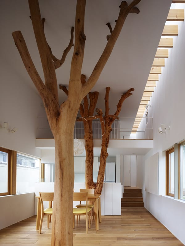 featured posts image for Minimalist house integrating trees in its design: Garden Tree House