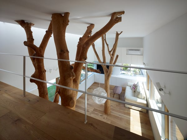 Garden Tree House-Hironaka Ogawa Associates-04-1 Kindesign