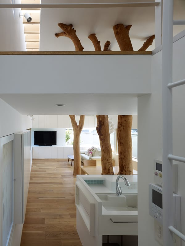 Garden Tree House-Hironaka Ogawa Associates-05-1 Kindesign