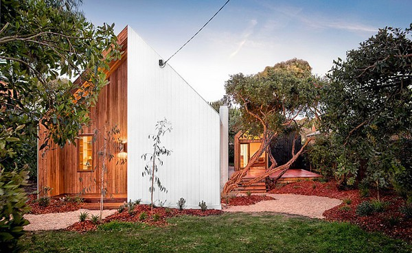 featured posts image for Tiny weatherboard beach shack renovation in Barwon Heads