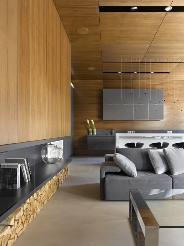 Contemporary Home in Russia-Alexandra Fedorova-08-1 Kindesign