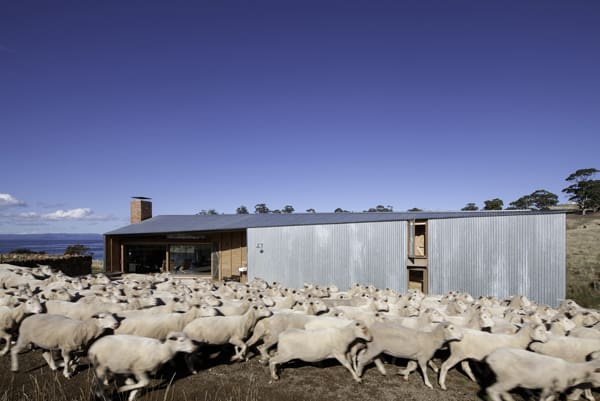 Shearers Quarters House-John Wardle Architects-04-1 Kindesign