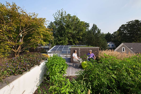 Trees on the Roof-Meditch Murphey Architects-16-1 Kindesign