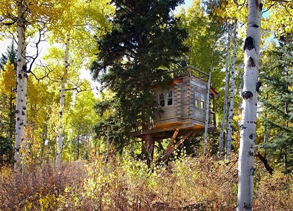 Colorado Treehouse-Missy Brown Design-04-1 Kindesign
