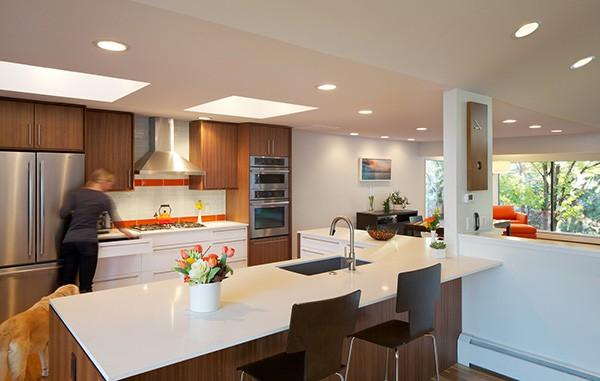 Hornstein Residence-Design Platform-03-1 Kindesign