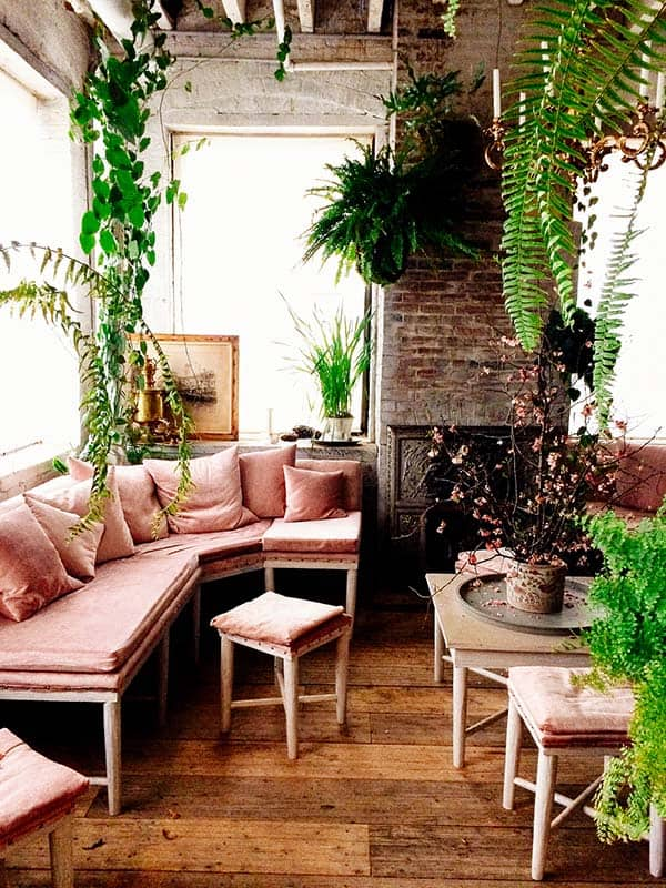 Decorated Spaces With Plants-10-1 Kindesign