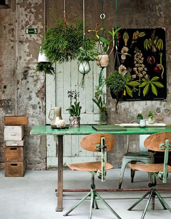 Decorated Spaces With Plants-22-1 Kindesign