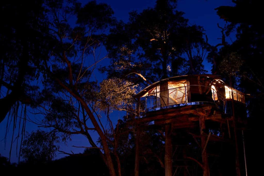 Treehouse Blue Mountains-23-1 Kindesign