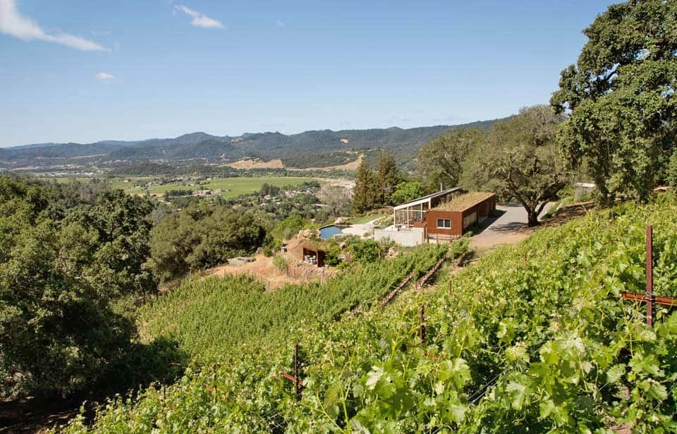contemporary-vineyard-home-turnbull-griffin-haesloop-02-1-kindesign