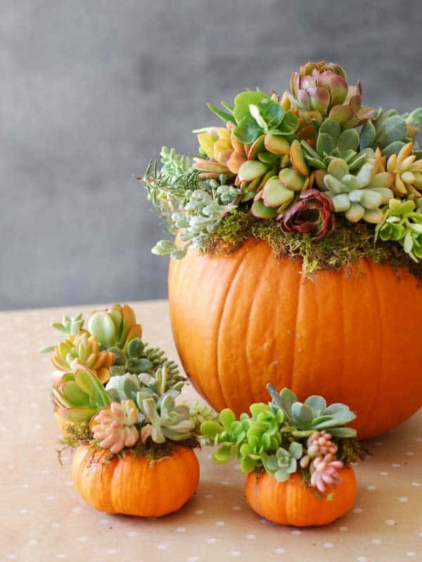 natural-thanksgiving-table-decorating-ideas-12-1-kindesign