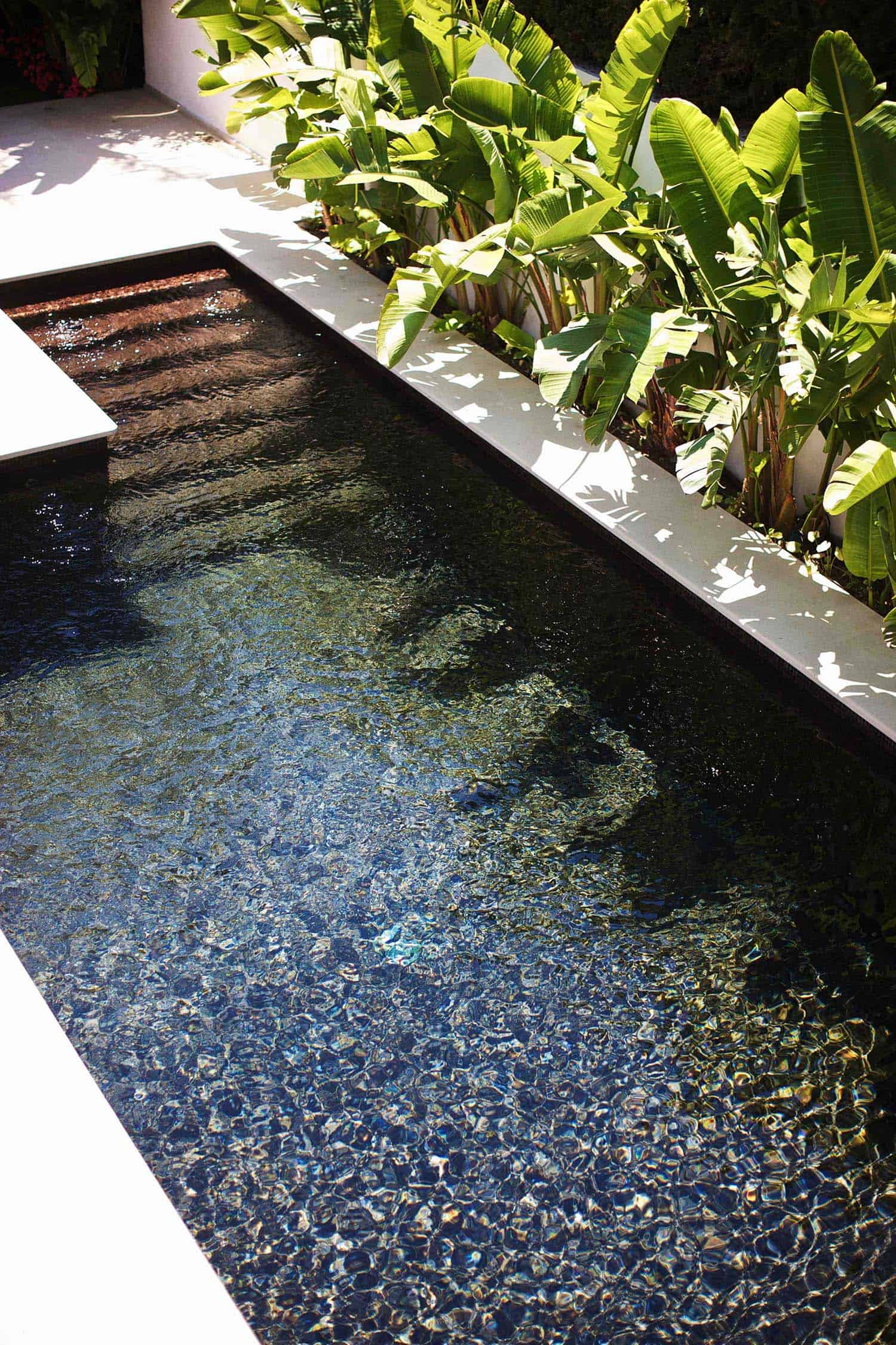 28 Refreshing Plunge Pools That Are Downright Dreamy