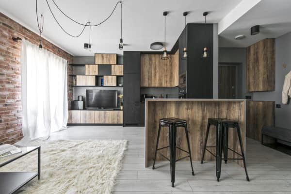 featured posts image for Small industrial apartment in Lithuania gets an inspiring update