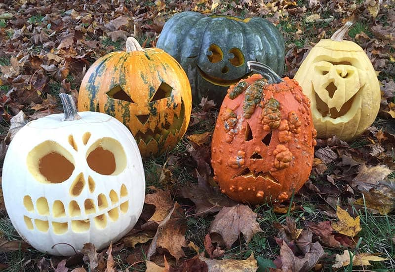 Creative Halloween Pumpkin Carving Ideas-04-1 Kindesign