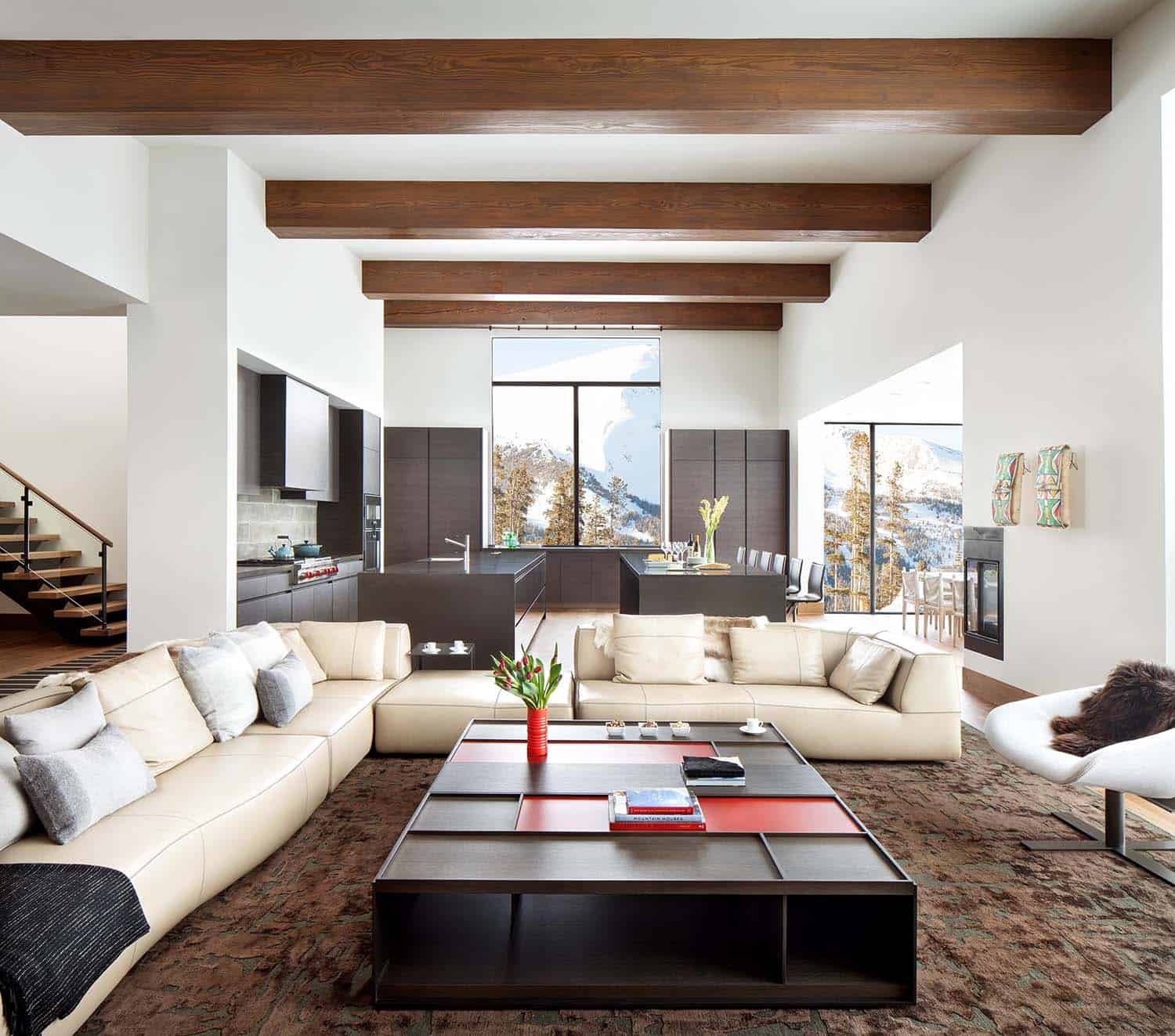Light Filled Contemporary Living Rooms