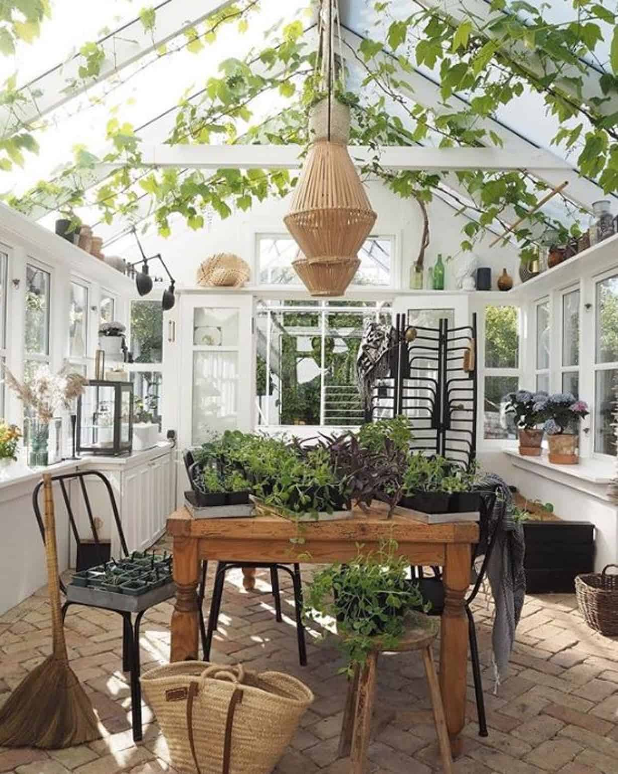 conservatory-greenhouse-dining