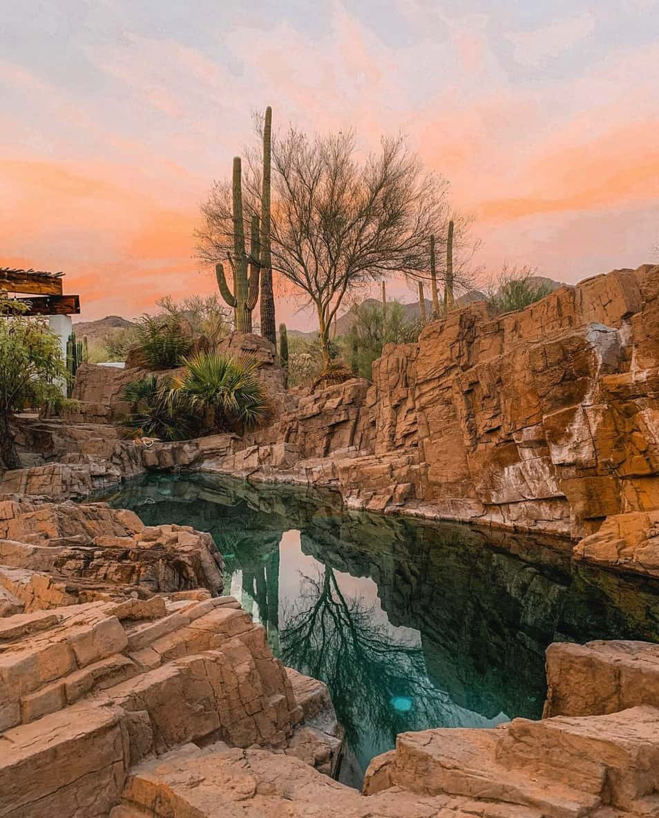 natural-outdoor-swimming-pool-in-the-desert