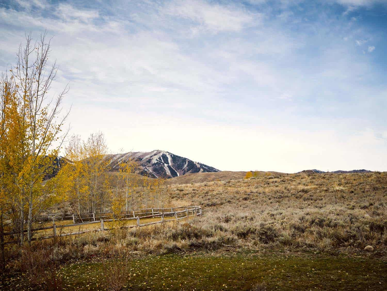 modern-mountain-home-landscape