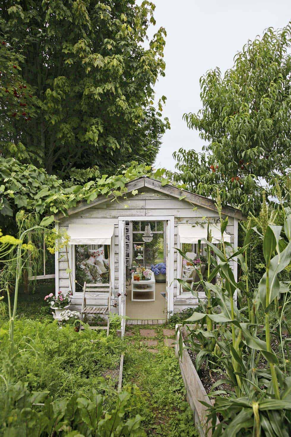 she-shed-greenhouse-backyard-garden-getaway