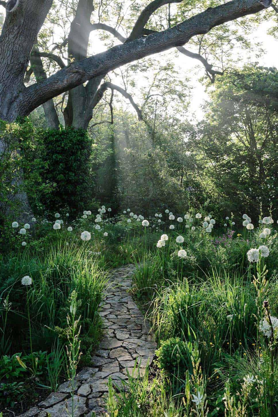 garden-stone-pathway-forest