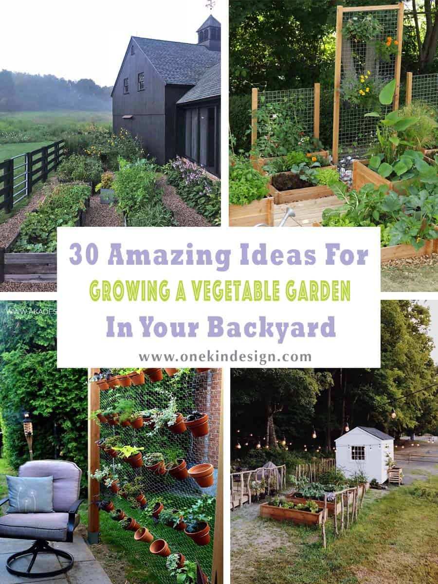 10 Amazing Ideas For Growing A Vegetable Garden In Your Backyard
