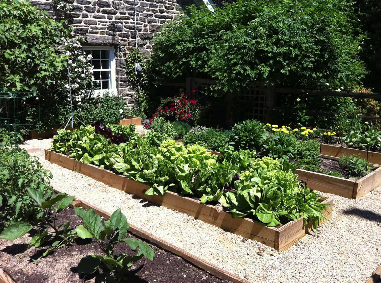 inspiring-vegetable-garden-ideas-cedar-raised-beds