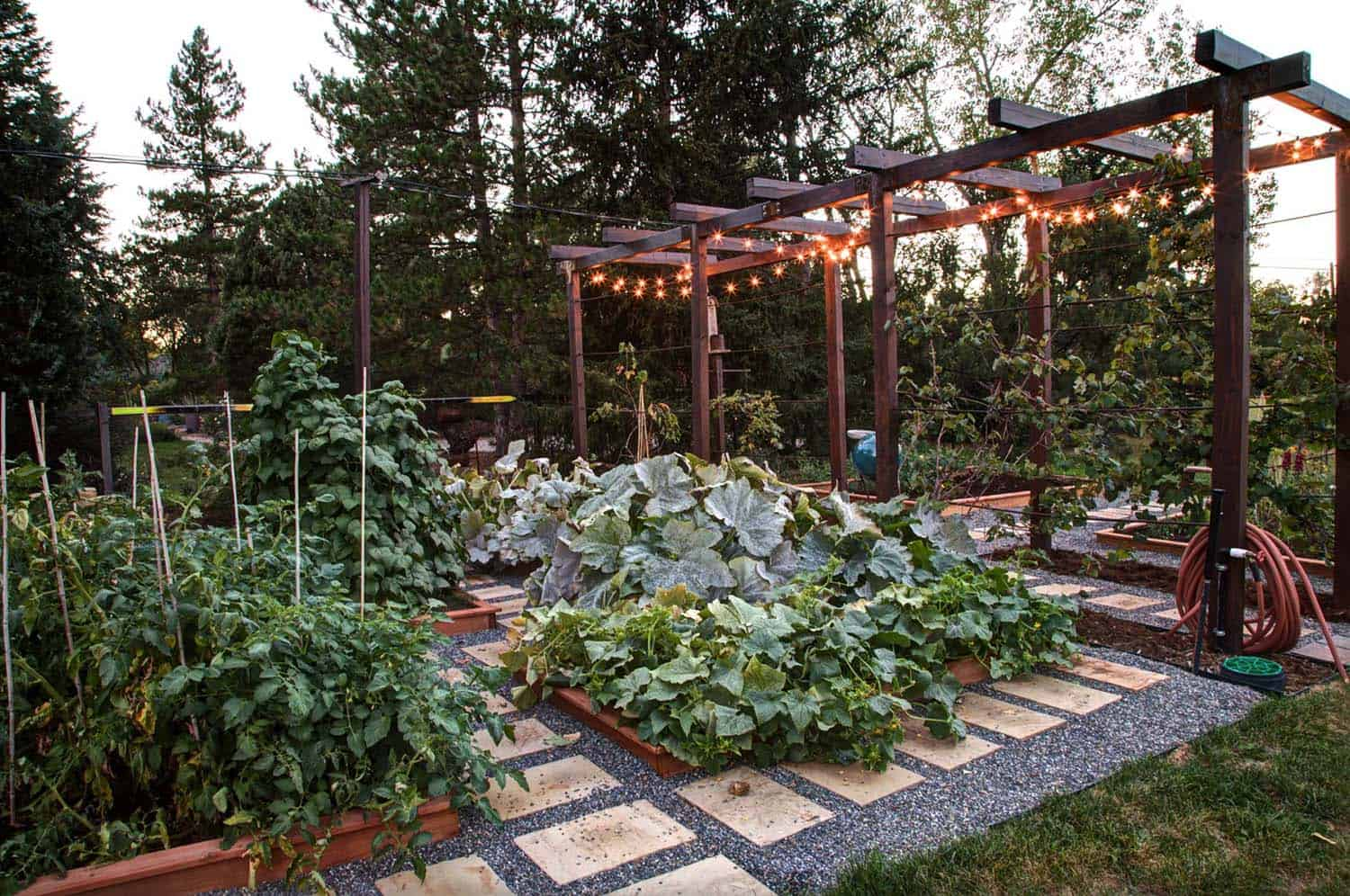 Image of: 30 Amazing Ideas For Growing A Vegetable Garden In Your Backyard