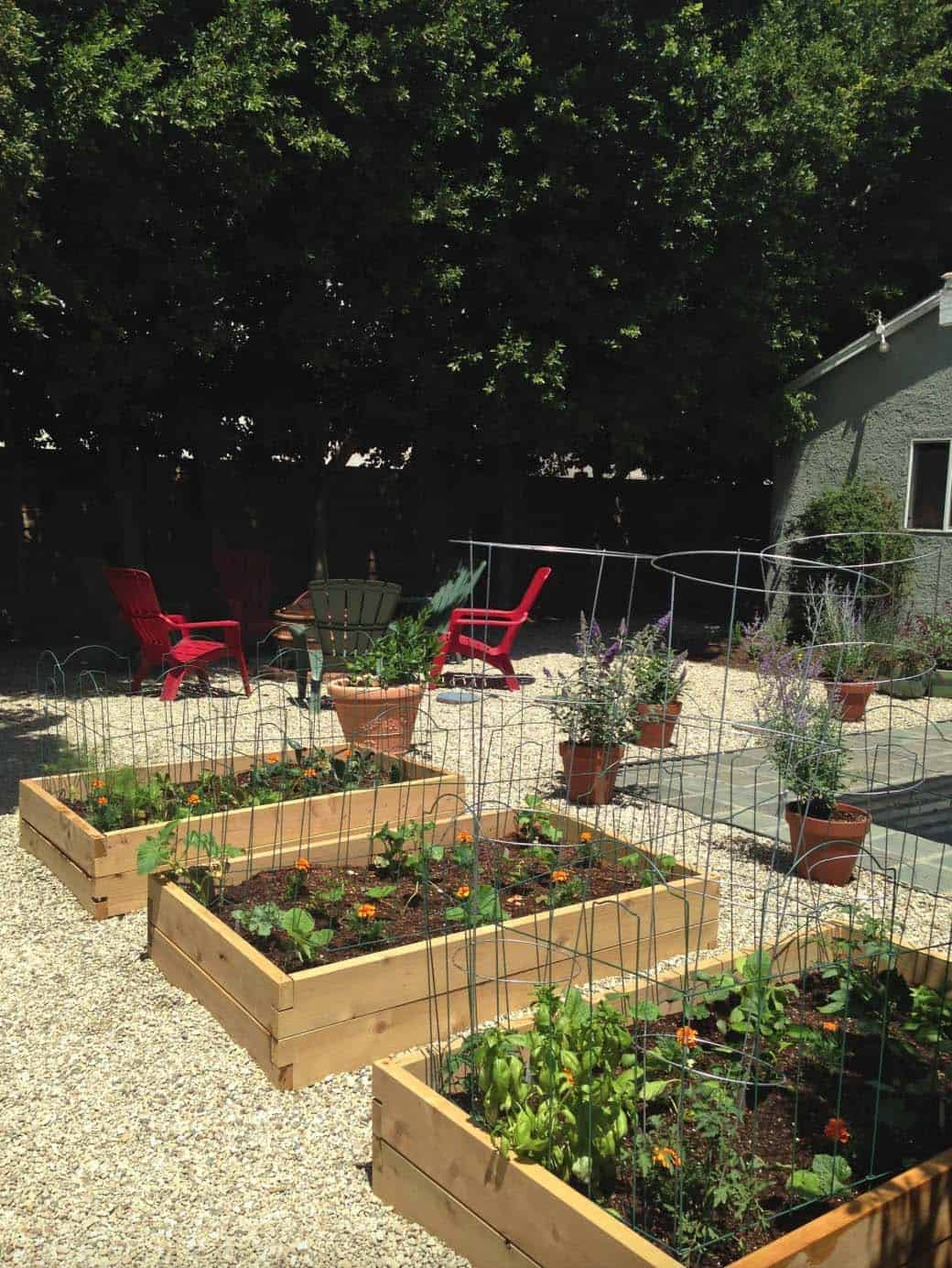 30 Amazing Ideas For Growing A Vegetable Garden In Your ...