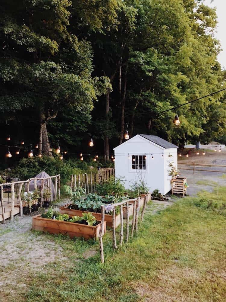 inspiring-vegetable-garden-ideas