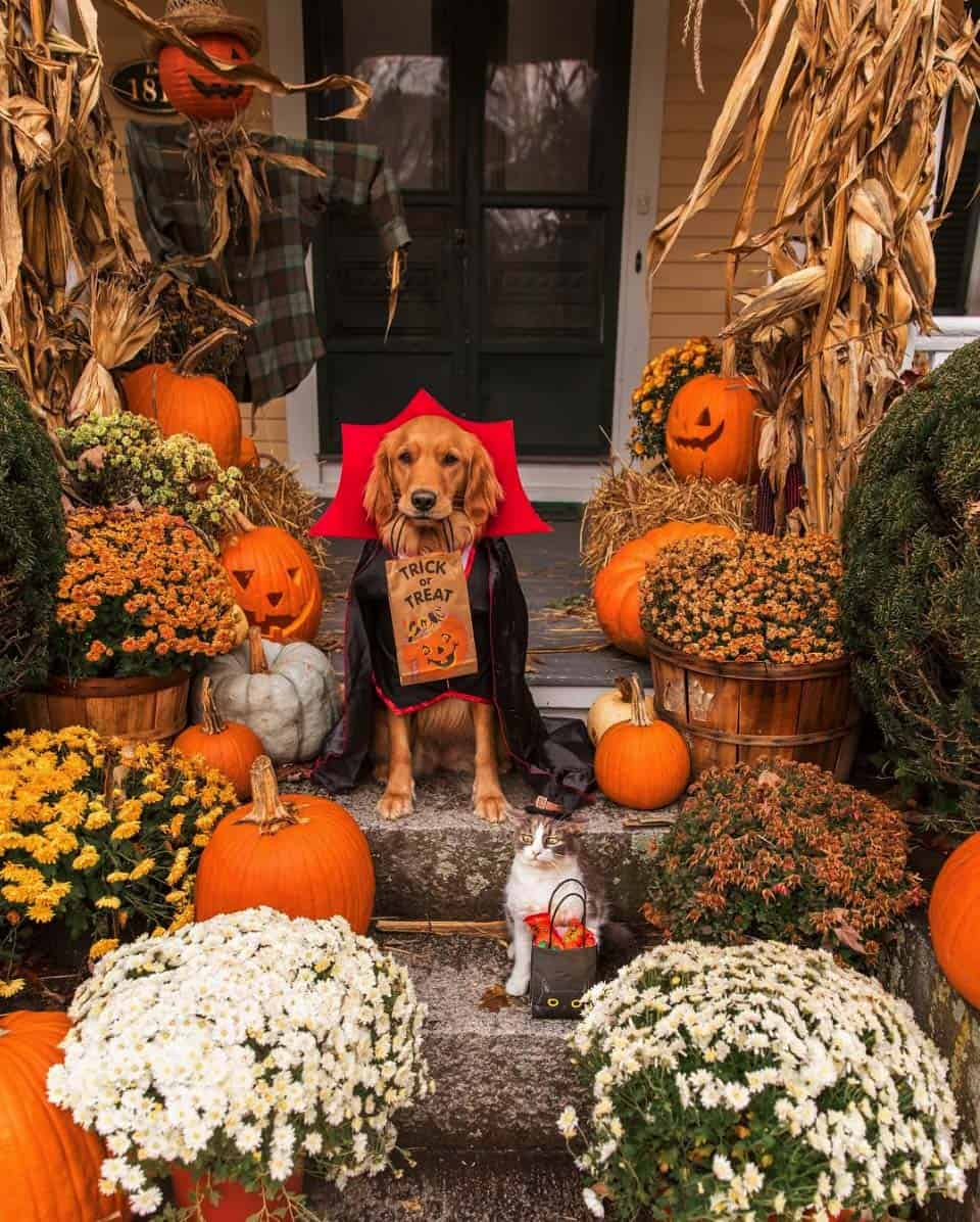 front-porch-decorating-ideas-for-fall
