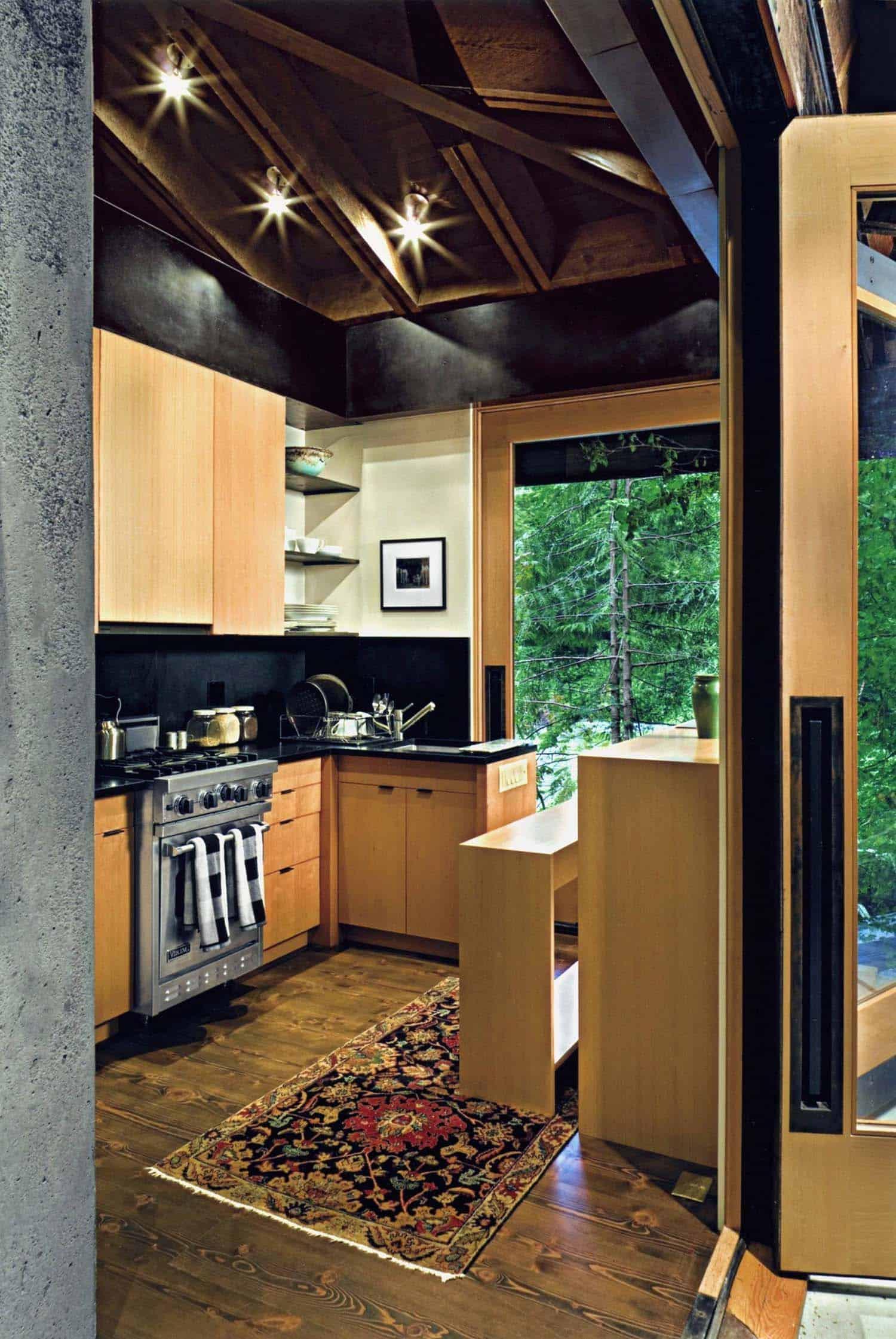 compact-modern-cabin-kitchen