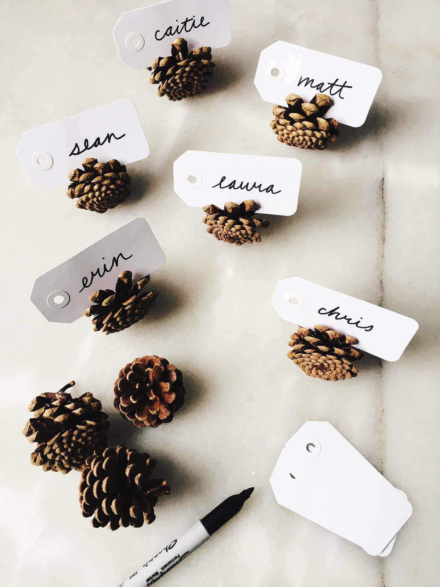 thanksgiving-decor-ideas-pinecone-place-cards