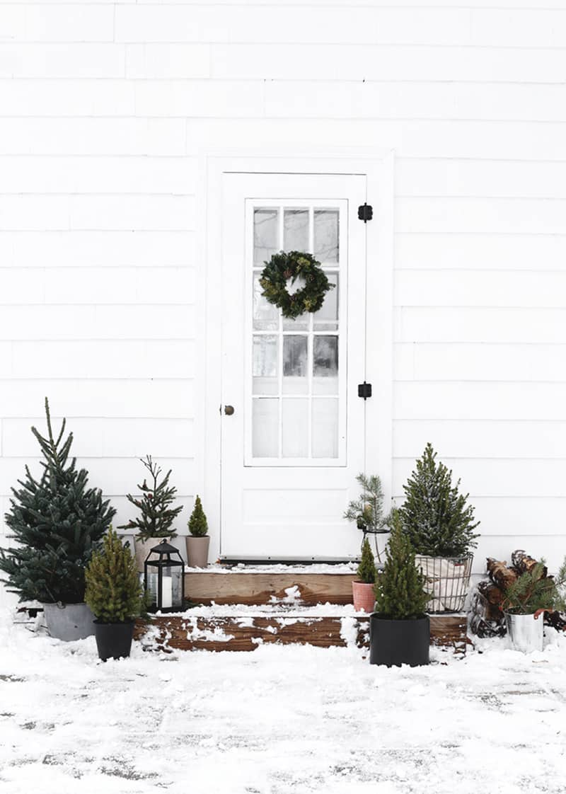 stunning-outdoor-decorations-christmas-trees