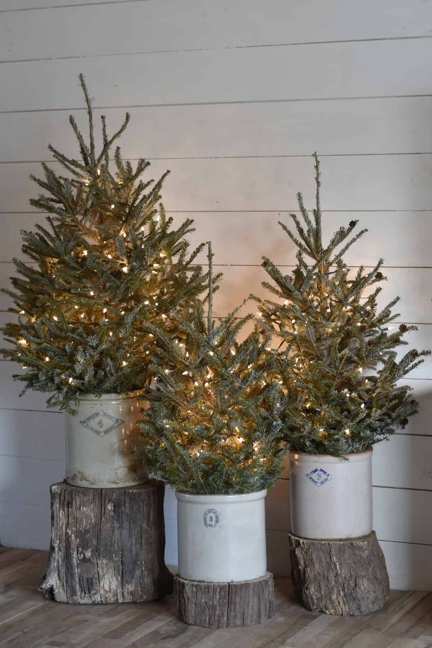 rustic-farmhouse-christmas-decorating-ideas-christmas-trees