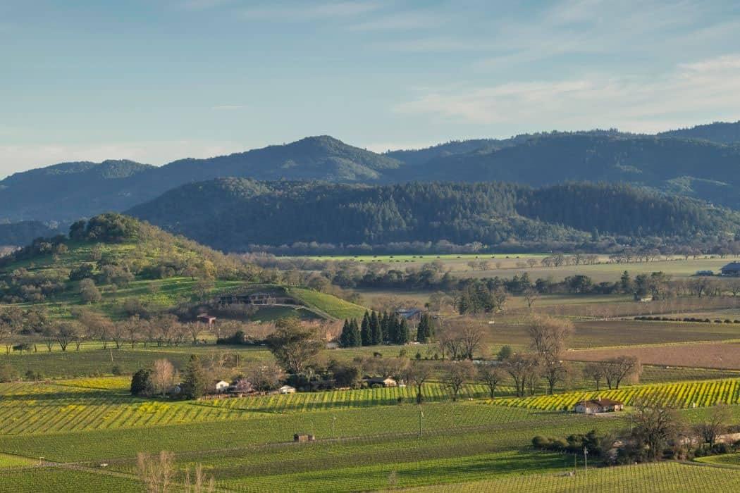 modern-landscape