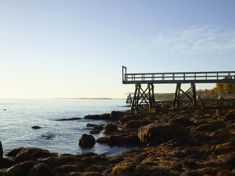 seaside-home-landscape