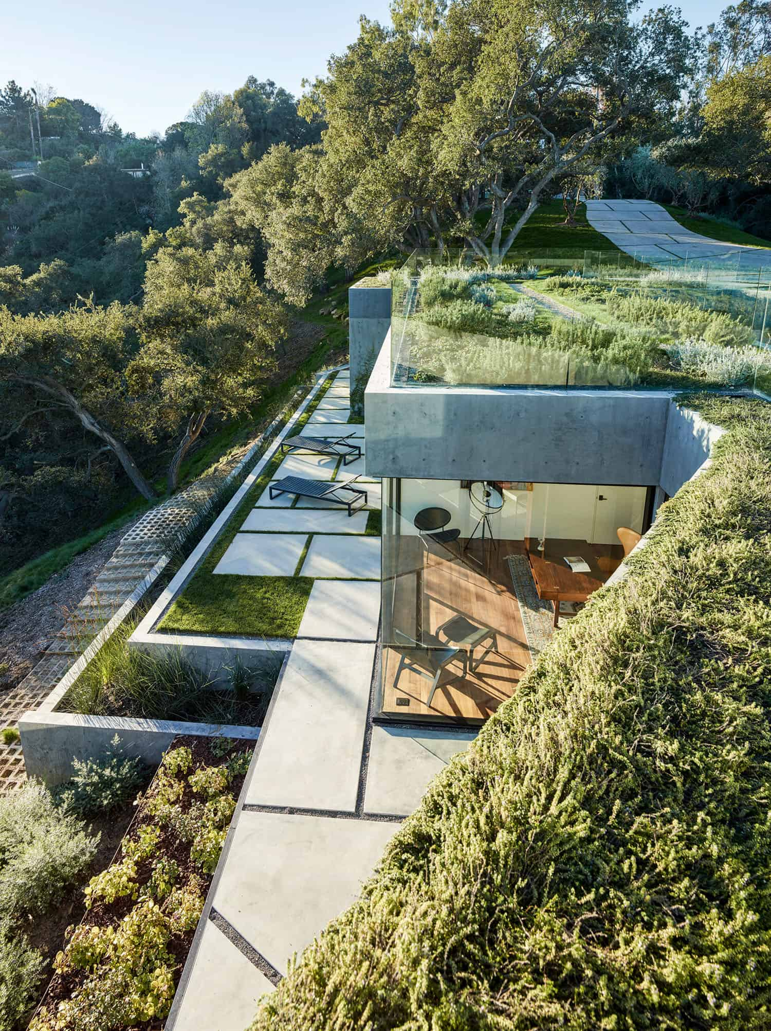 modern-home-exterior-green-roof