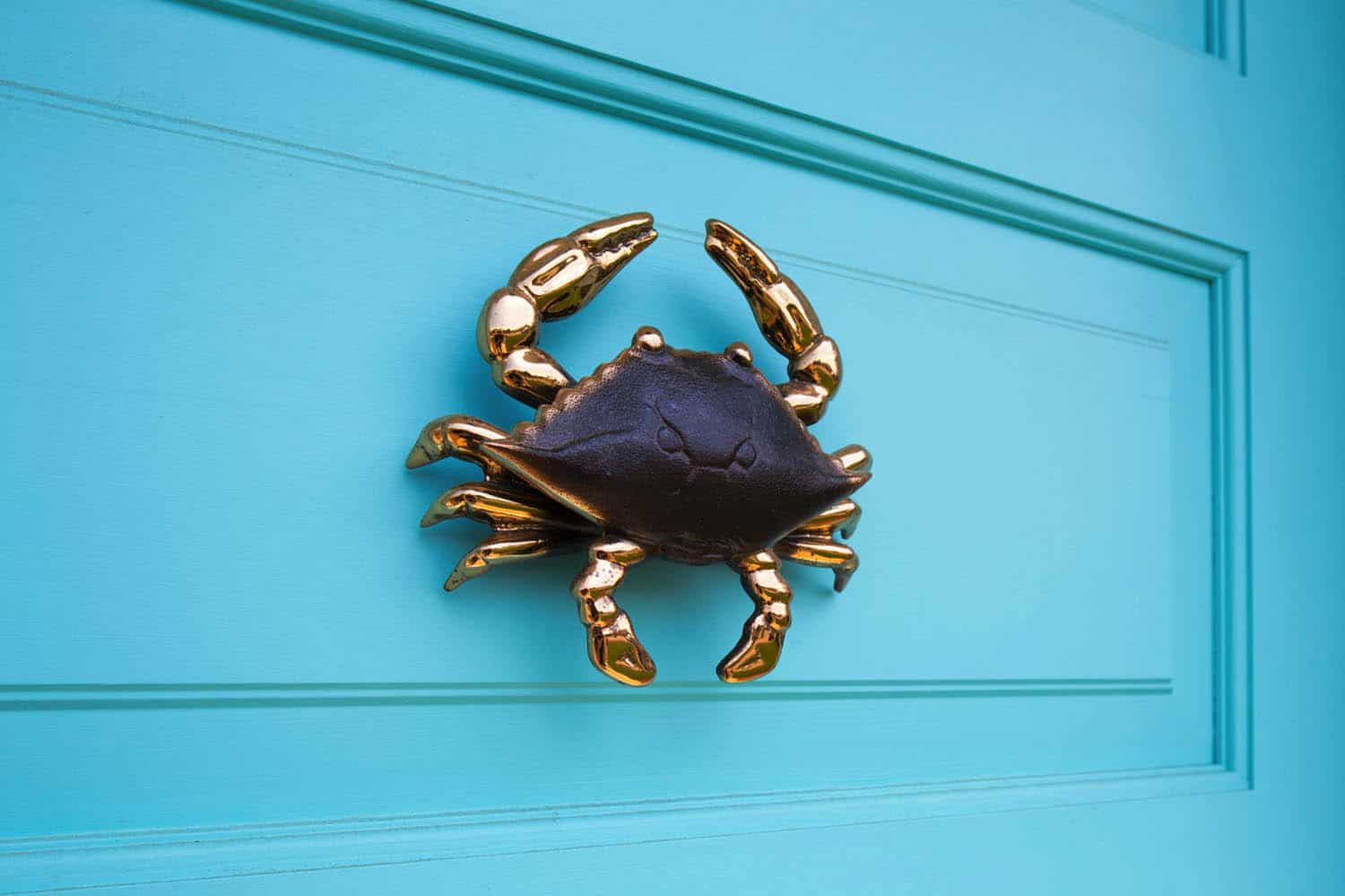 beach-style-door-knocker-detail
